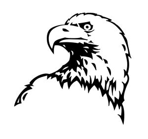 Image vectoriel aigle