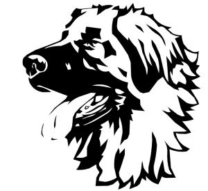 Image vectoriel chien